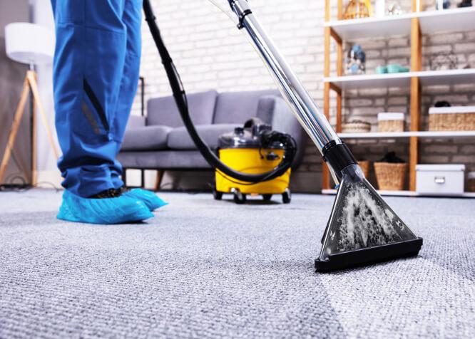 Tidy carpet service